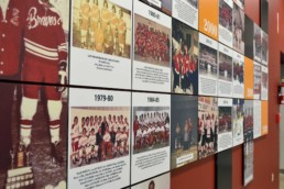 LeRoy Braves Wall Display Acrylic Tiles